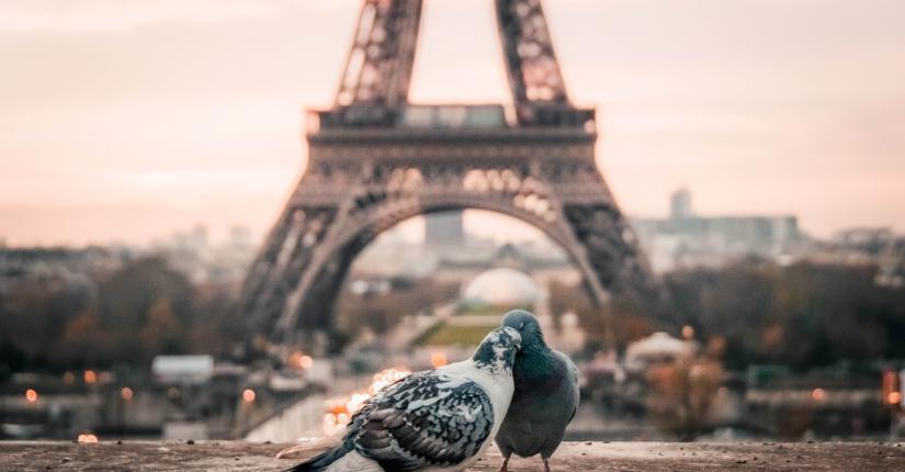 Drawing Hotel - Paris - Eiffel Tower